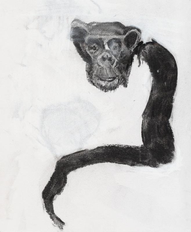Long Arm, 2007