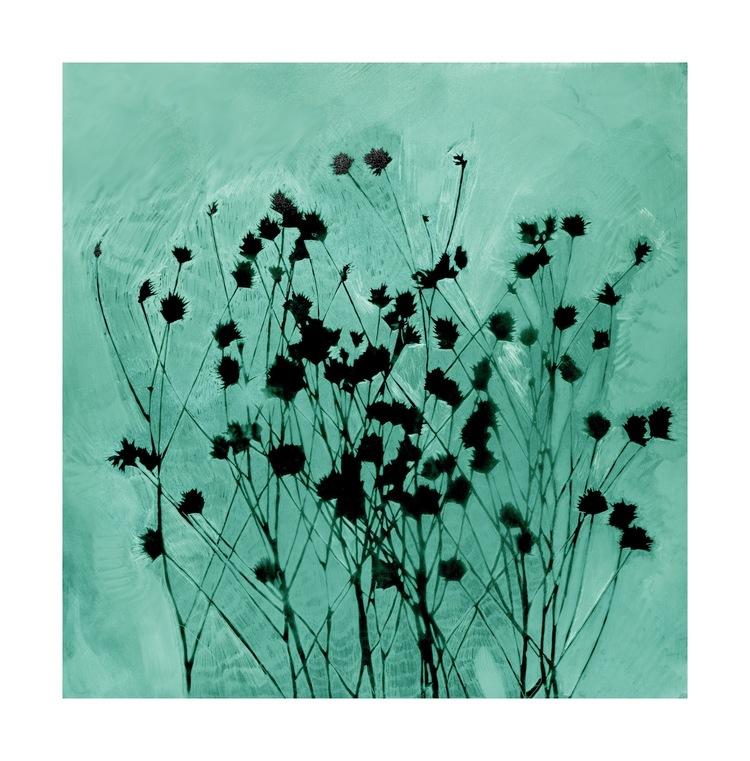 Turquoise+Meadow.jpg