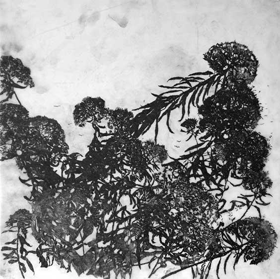 Falling Flowers, 2013