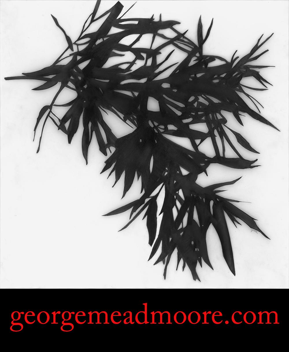 Bambu Portada web.jpg