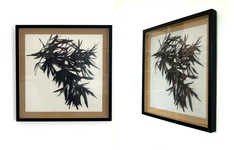 frames-NW.jpg