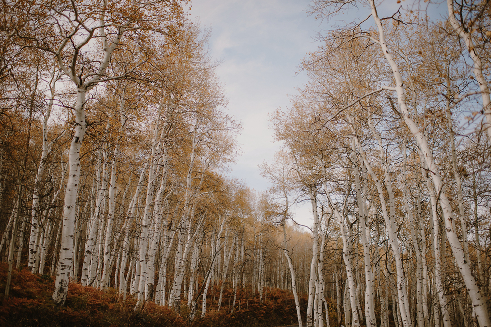 UtahWeddingElopementPhotographer_KristenMarieParker-121.jpg