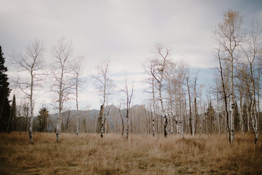 UtahWeddingElopementPhotographer_KristenMarieParker-137.jpg