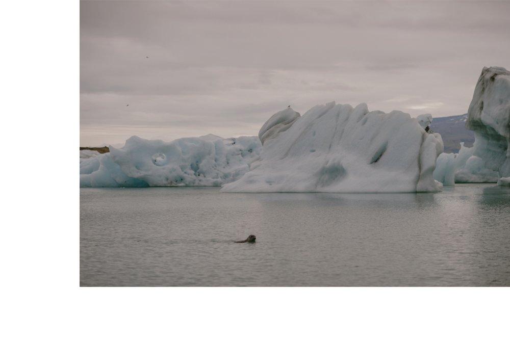 Iceland_Engagement_Kristen_Marie_Parker-90.jpg