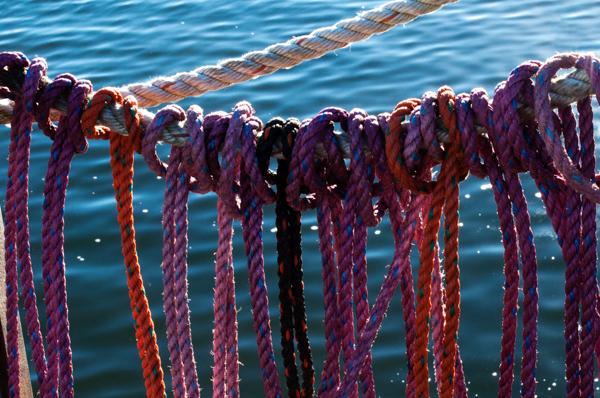 ropes_port clyde-0018-edit.jpg
