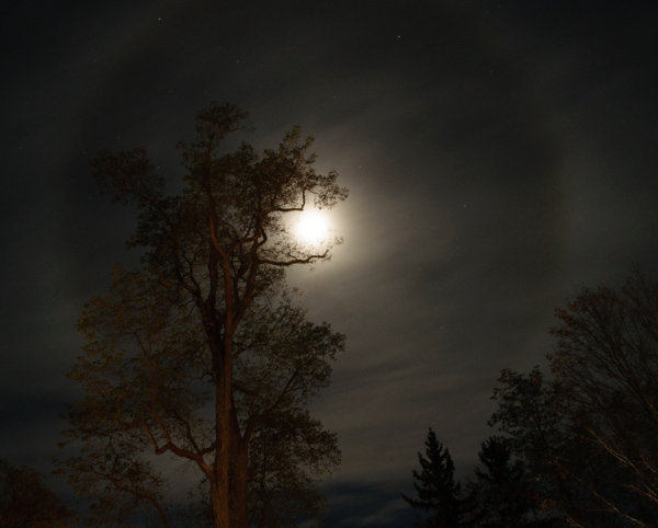 moon corona_night shoot-9911.jpg