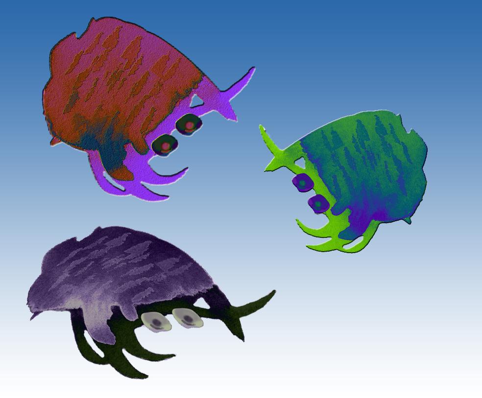 Crabby inkblot babies