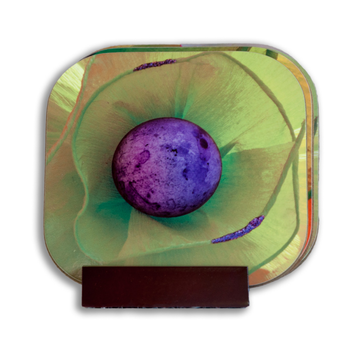 Purple Egg Coaster Set
