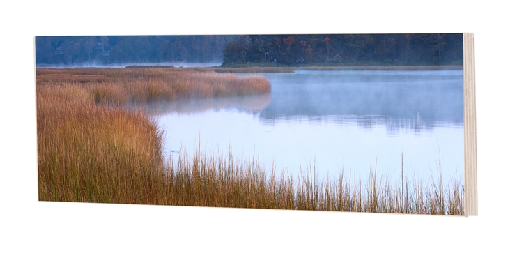 Marsh Bend Panel
