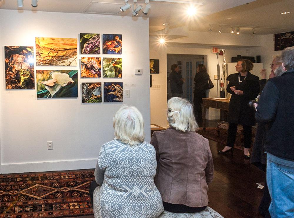 Gallery 4 Exhibition