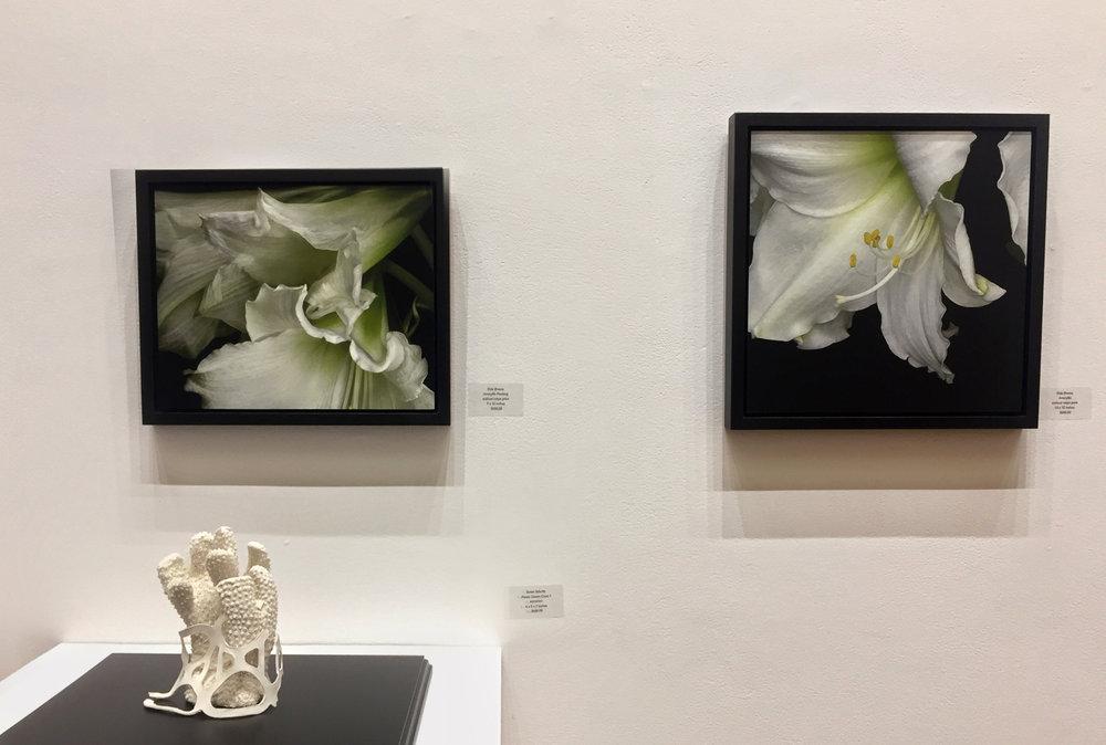 Shattuck Gallery 2018