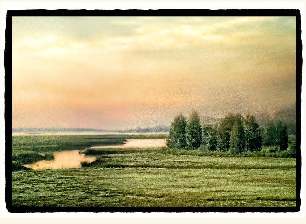 Marsh Dawn