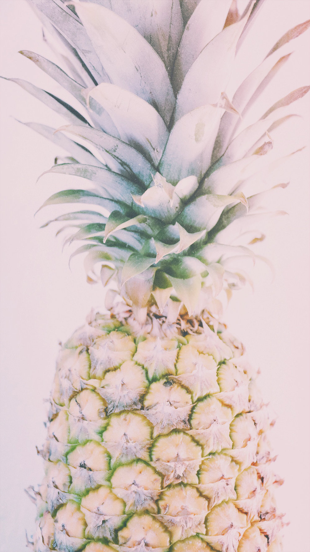 Wallpaper iphone pineapple - Iphone 6 Plus Iphone 6s Plus Iphone 7 Plus