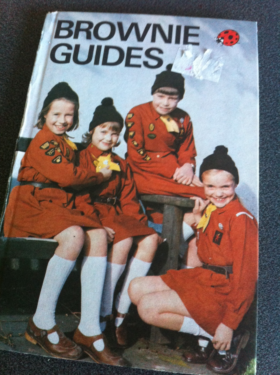 Vintage Ladybird Brownie Guides Book