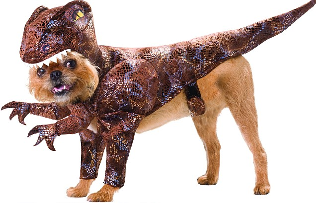 Dogs Dressed as Dinosaurs