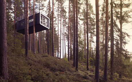 Incredible Tree House Hotel in Sweden