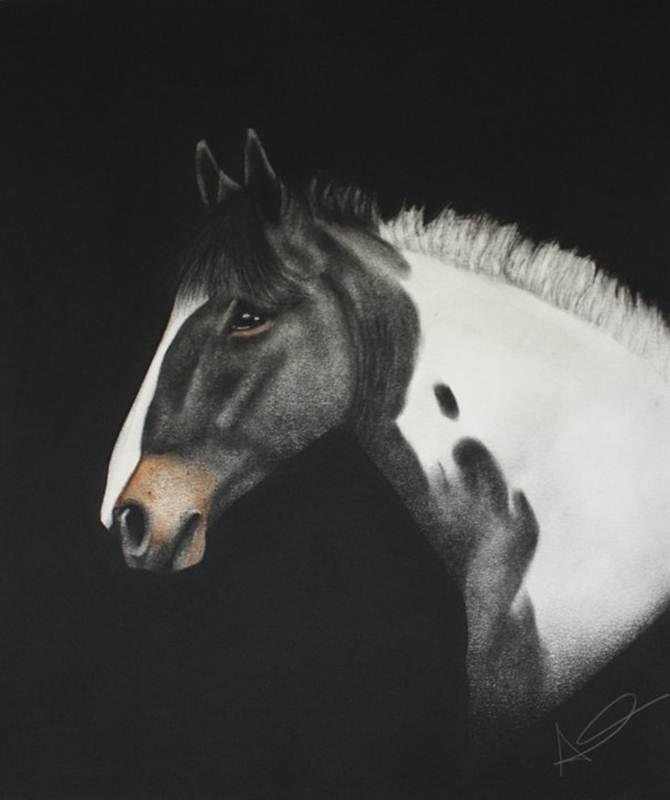 Win a Stunning Charcoal Portrait of Your Pet or Favourite Animal