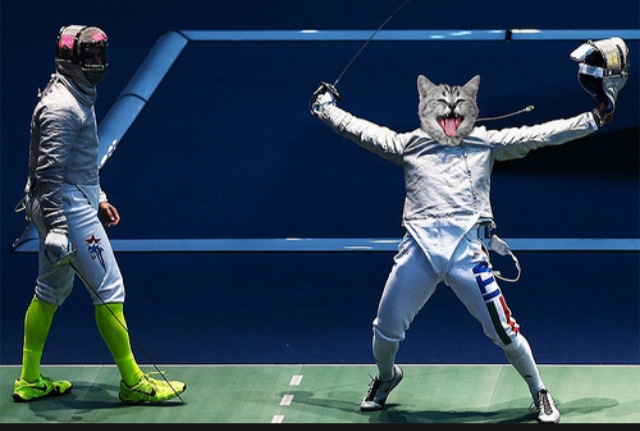 The Cat Olympics