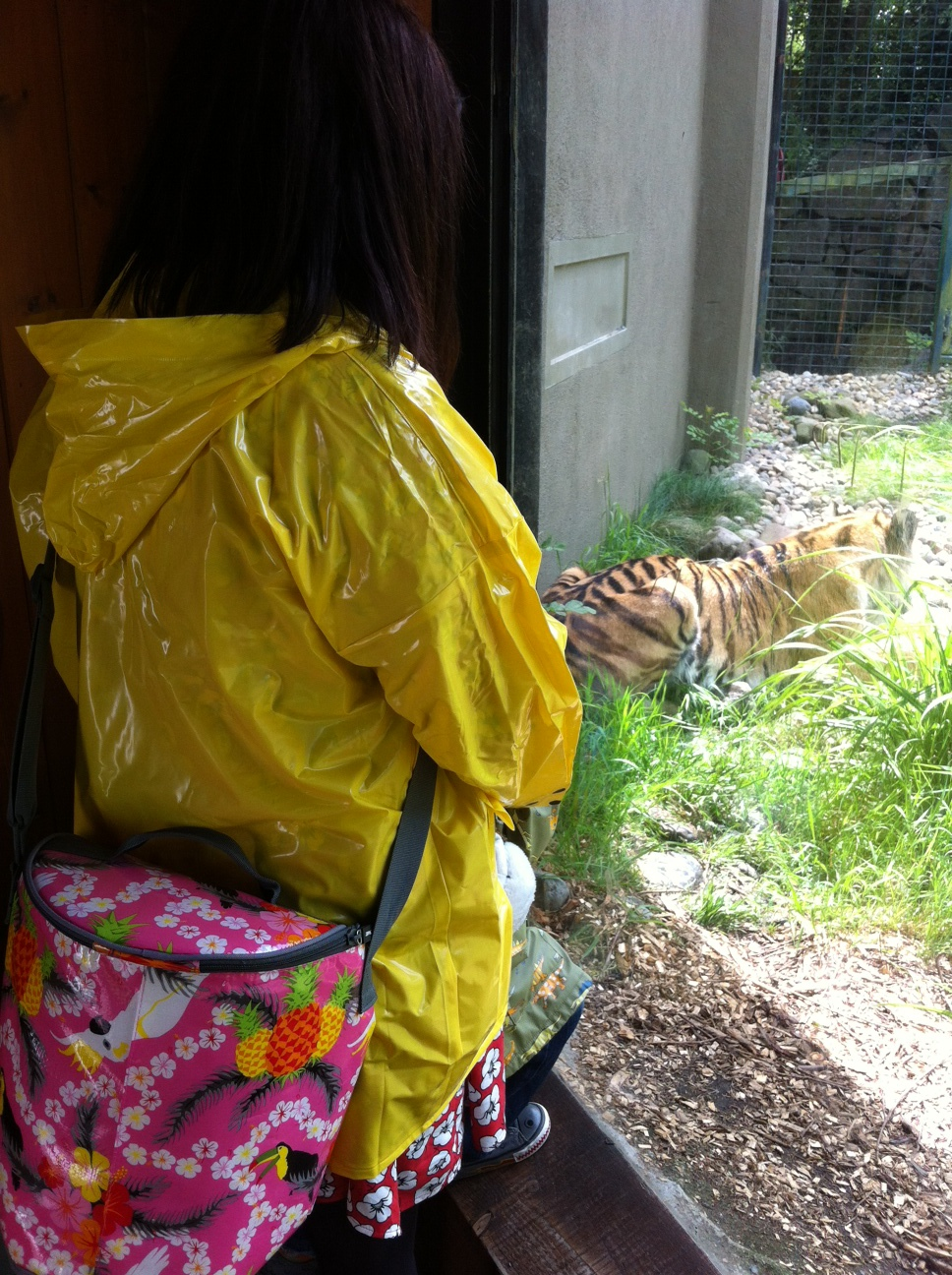 Trip to Dublin Zoo with Ikea Picnic Goodies