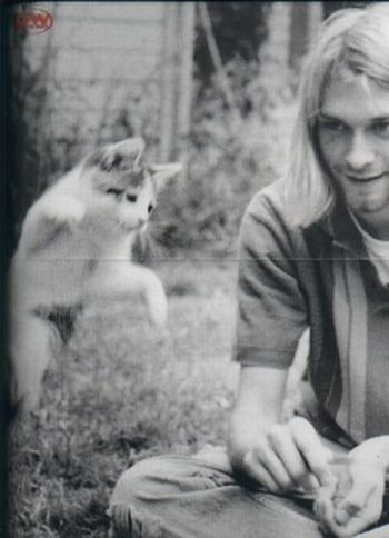 Rock Stars with Cats