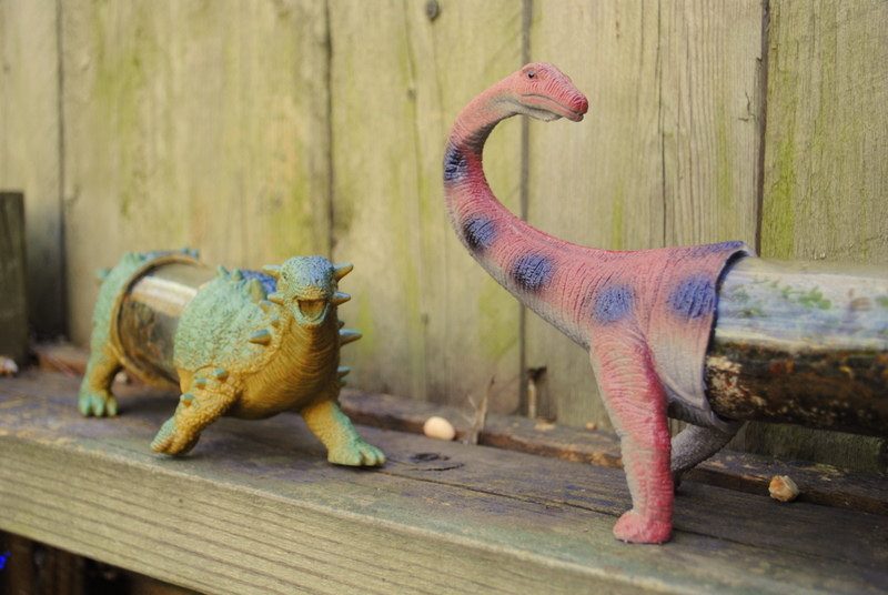 Mini Dino Habitats for your Windowsill