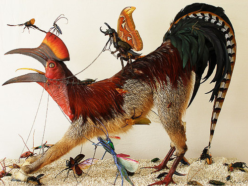 Enrique de Molina's Nightmarish Taxidermy