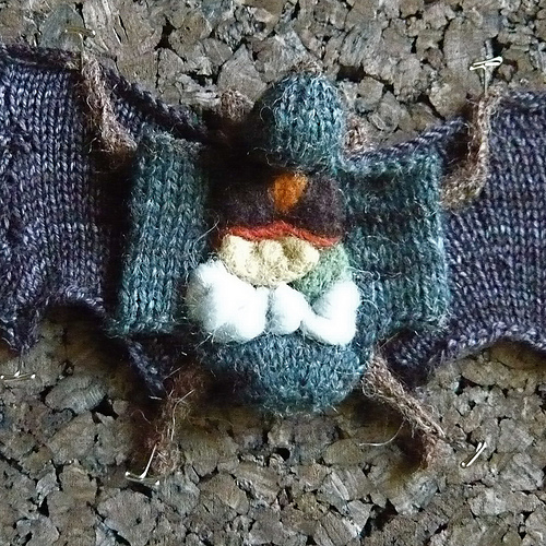 Knitted Dissected Frog