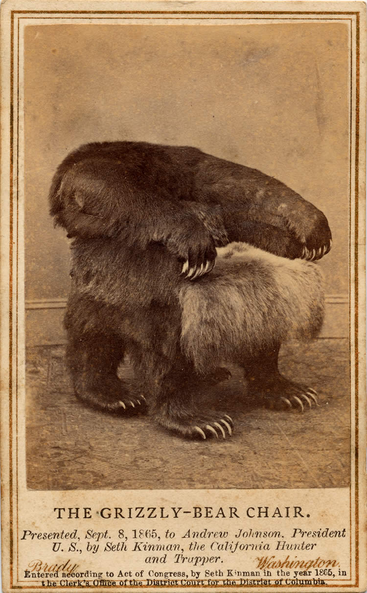 Grizzly Bear Chair