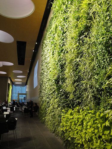 More Stunning Vertical Plant Walls
