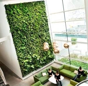 Indoor Plant Walls- Vertical Gardens