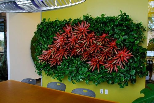 Indoor Plant Walls- Vertical Gardens