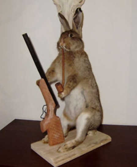 Taxidermy Easter Bunny Special