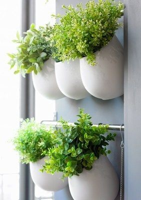 Exceptionnel How To Create A Herb Wall Garden. U2014 The World Of Kitsch