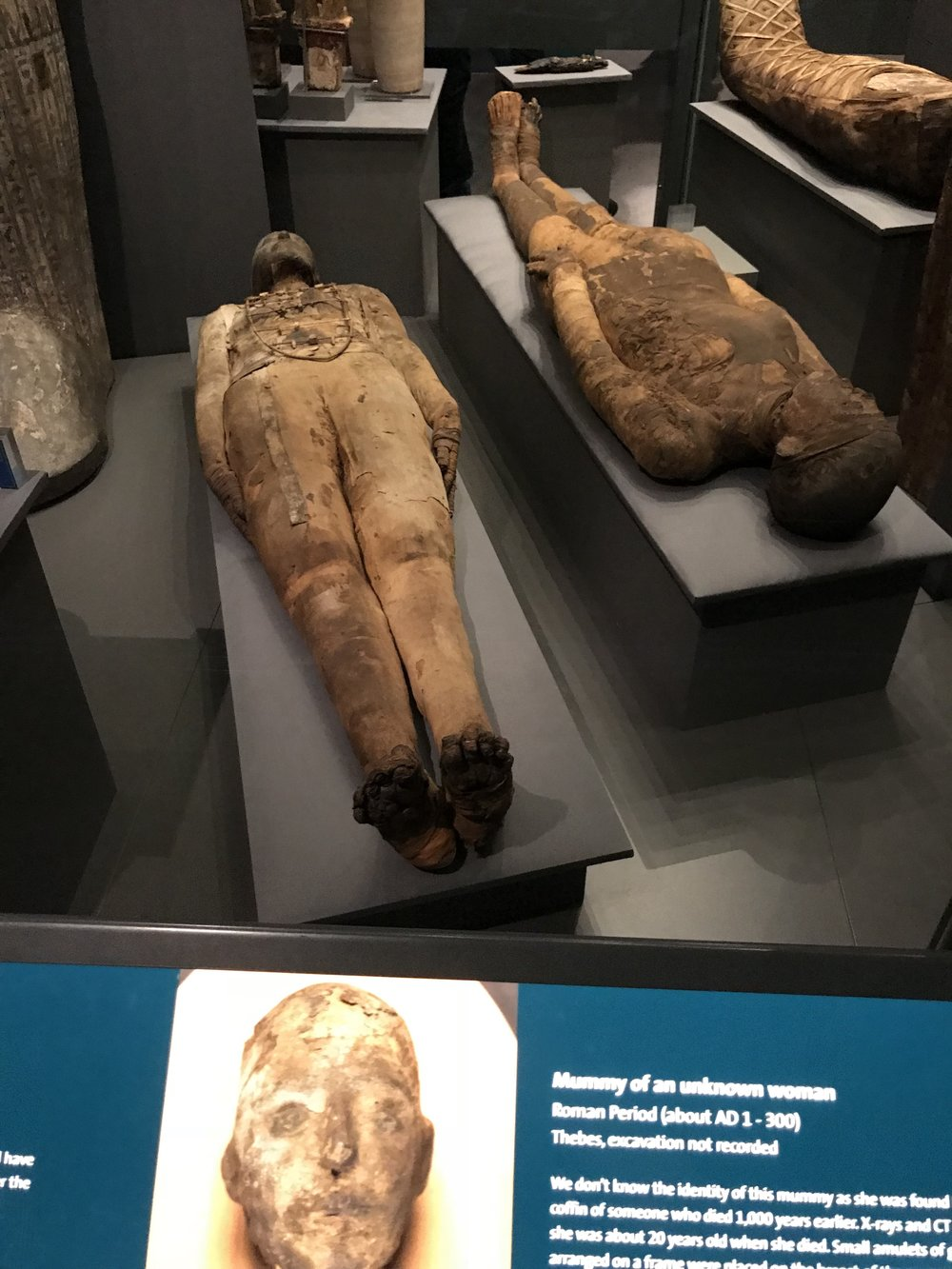 Mummy Exhibit