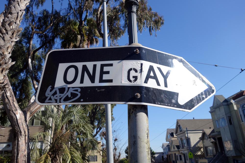 DSC00848 One Gay.JPG