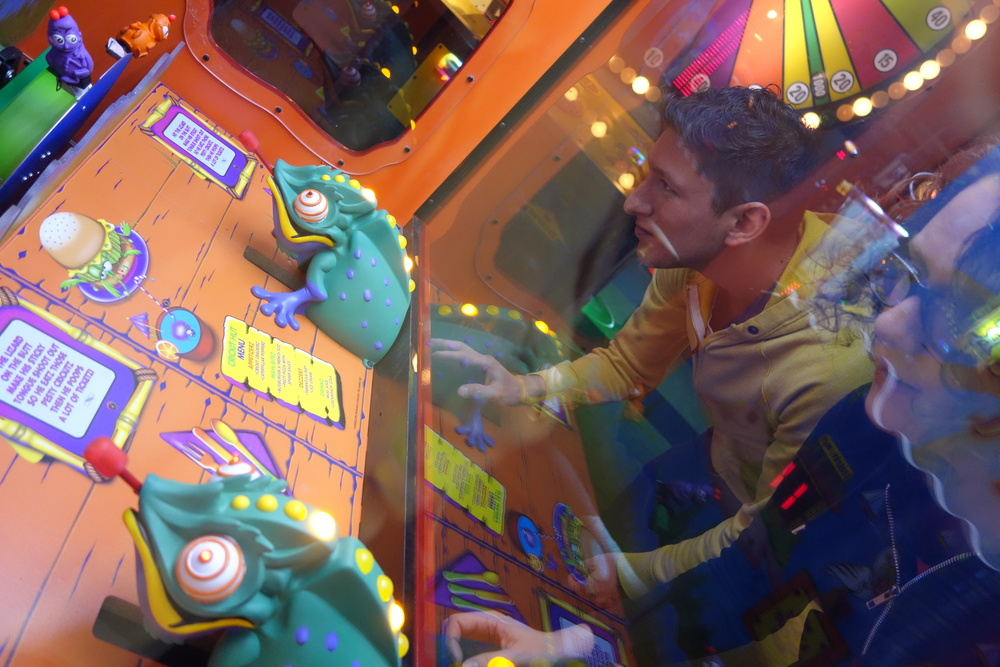 DSC01476 Bug Catcher Game.JPG