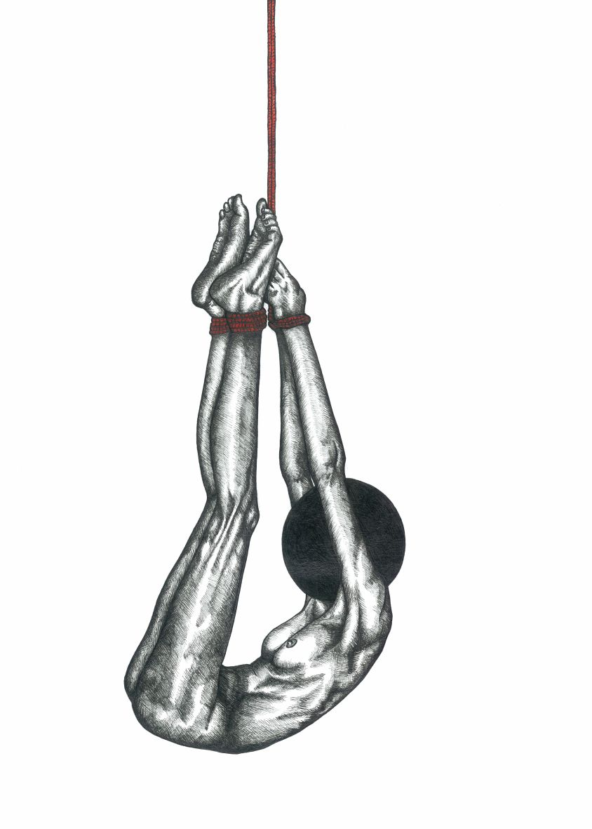 Henrietta Armstrong, Shibari II,  Pen and Ink, 11.65 x 16.53 ins, 2015
