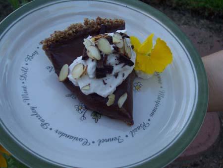 Ibarra Pie.JPG