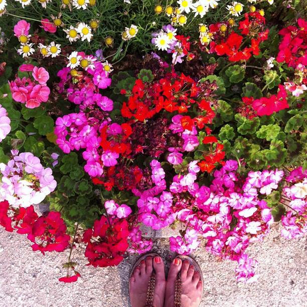 flowerfeet.jpg