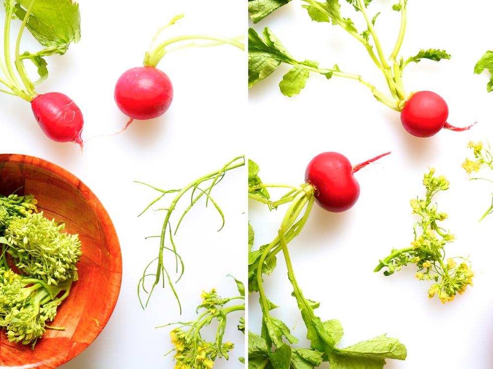 radishbroccoli.png