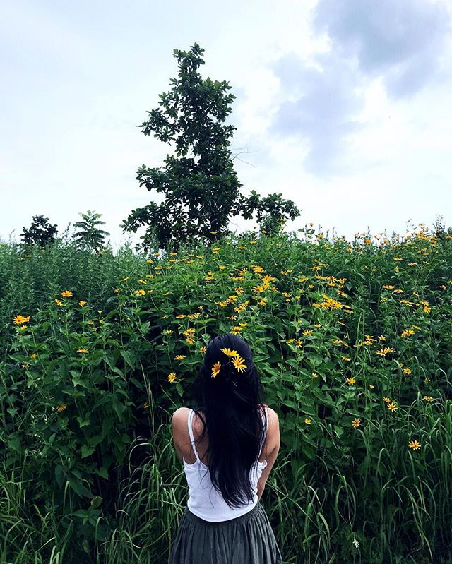 I get so excited when I see flowers I stopped here just to put them in my hair 🌼🌻✨ 📷: @nomastmas