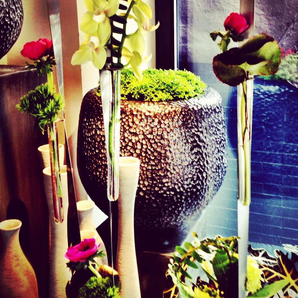 Window display at Winston Flowers- Newbury Street