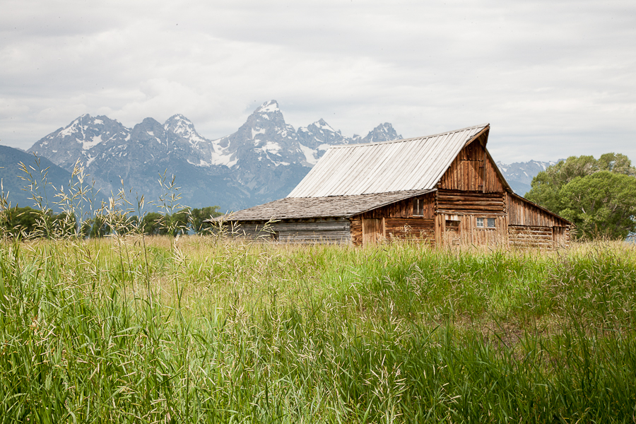 Mormon Barns and grass...