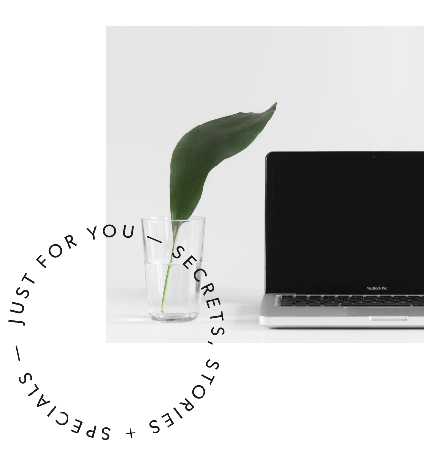 ficus-creative-studio-2018-website-newsletter-14-14.png