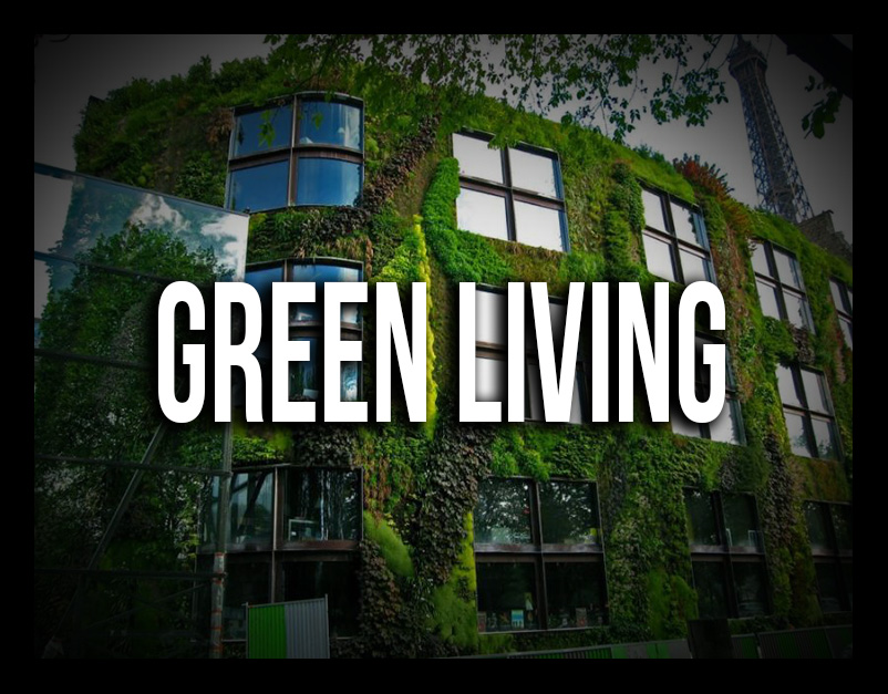greenliving2_AFTER3.jpg