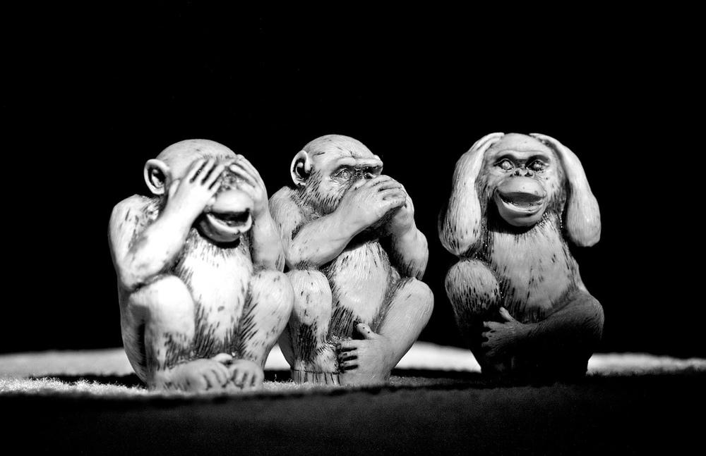 ThreeMonkeys.jpg