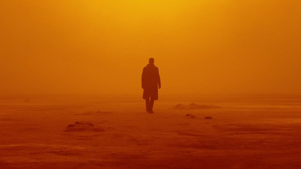 One of Roger Deakins' many astounding images in Denis Vlieenueve's  Blade Runner 2049  {Photo: WARNER BROS. PICTURES}