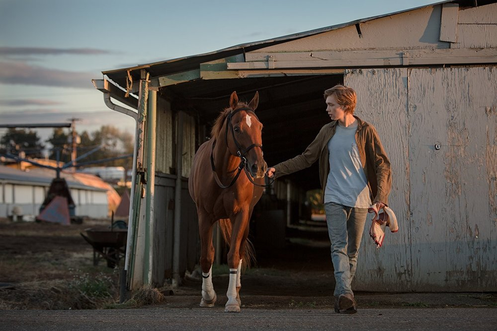 Charlie Plummer in a scene from Andrew Haigh's  Lean on Pete  {Photo: A24}