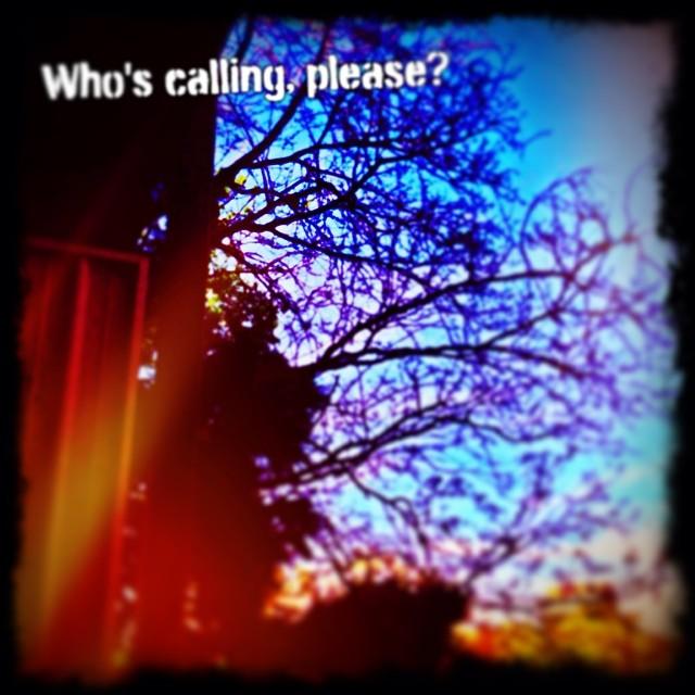 who-is-calling.jpg