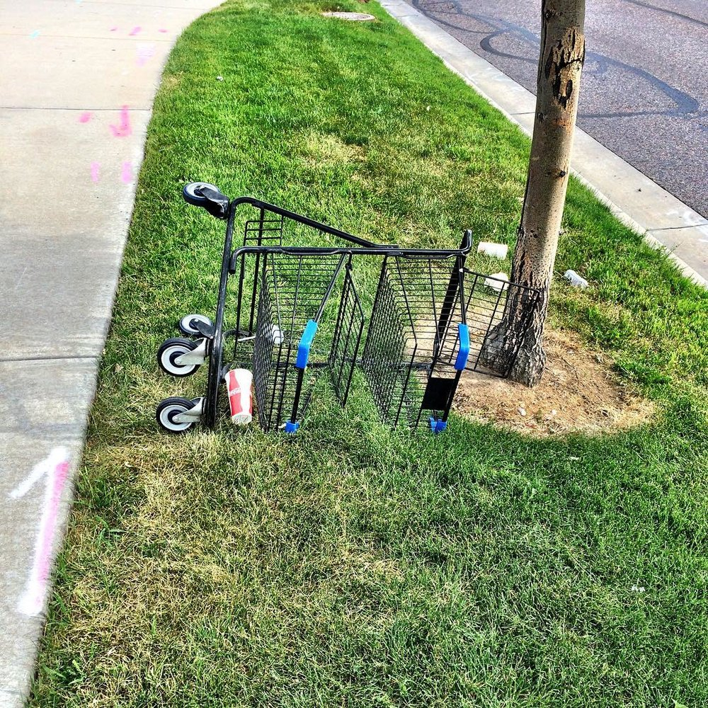 bbme-shopping-cart-3.jpg
